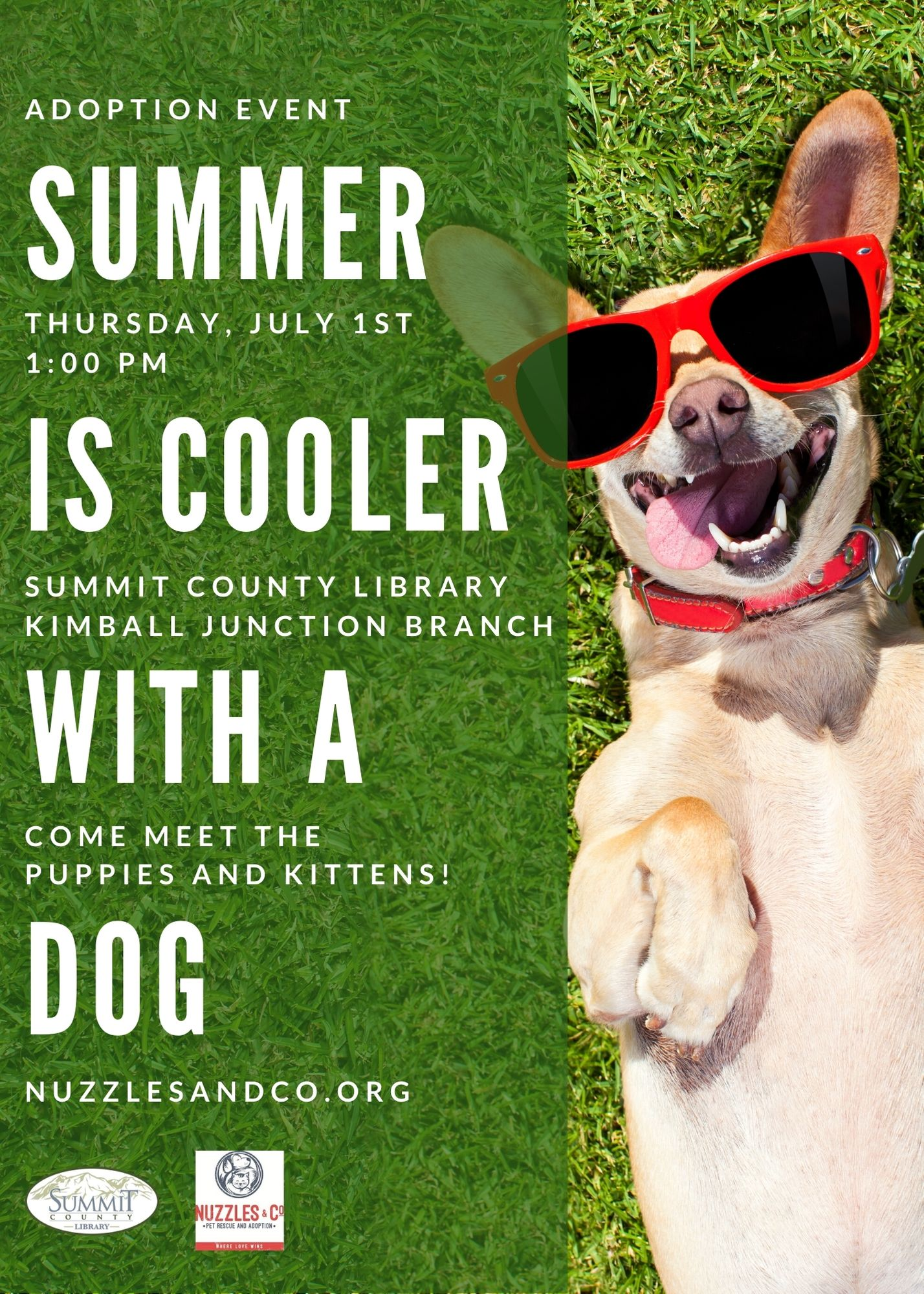 Summer is Cooler with a Dog--Adoption Event